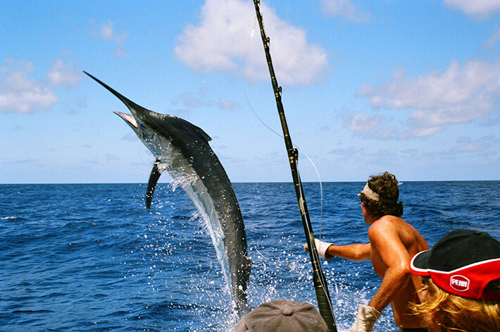 Fishing Tours Naples Florida