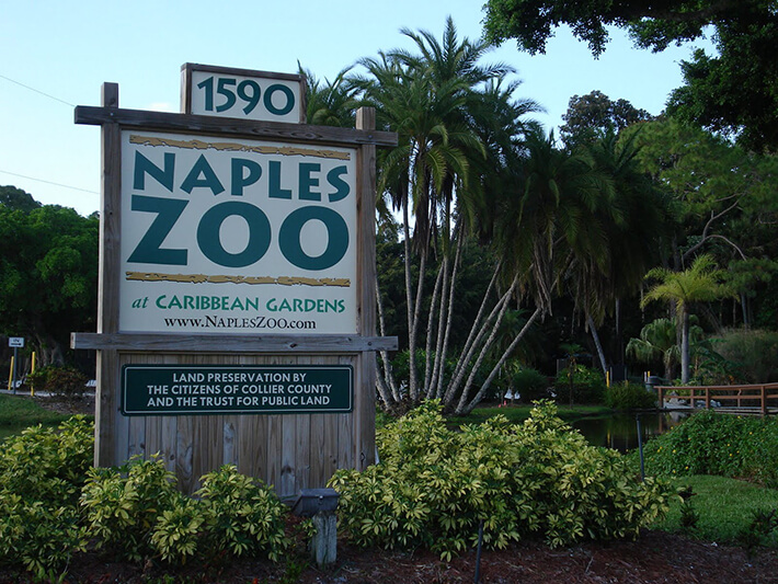 Naples Zoo - Florida