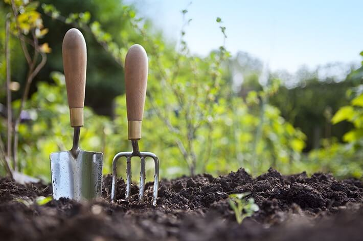 Gardening Hacks Every Gardener Needs To Know