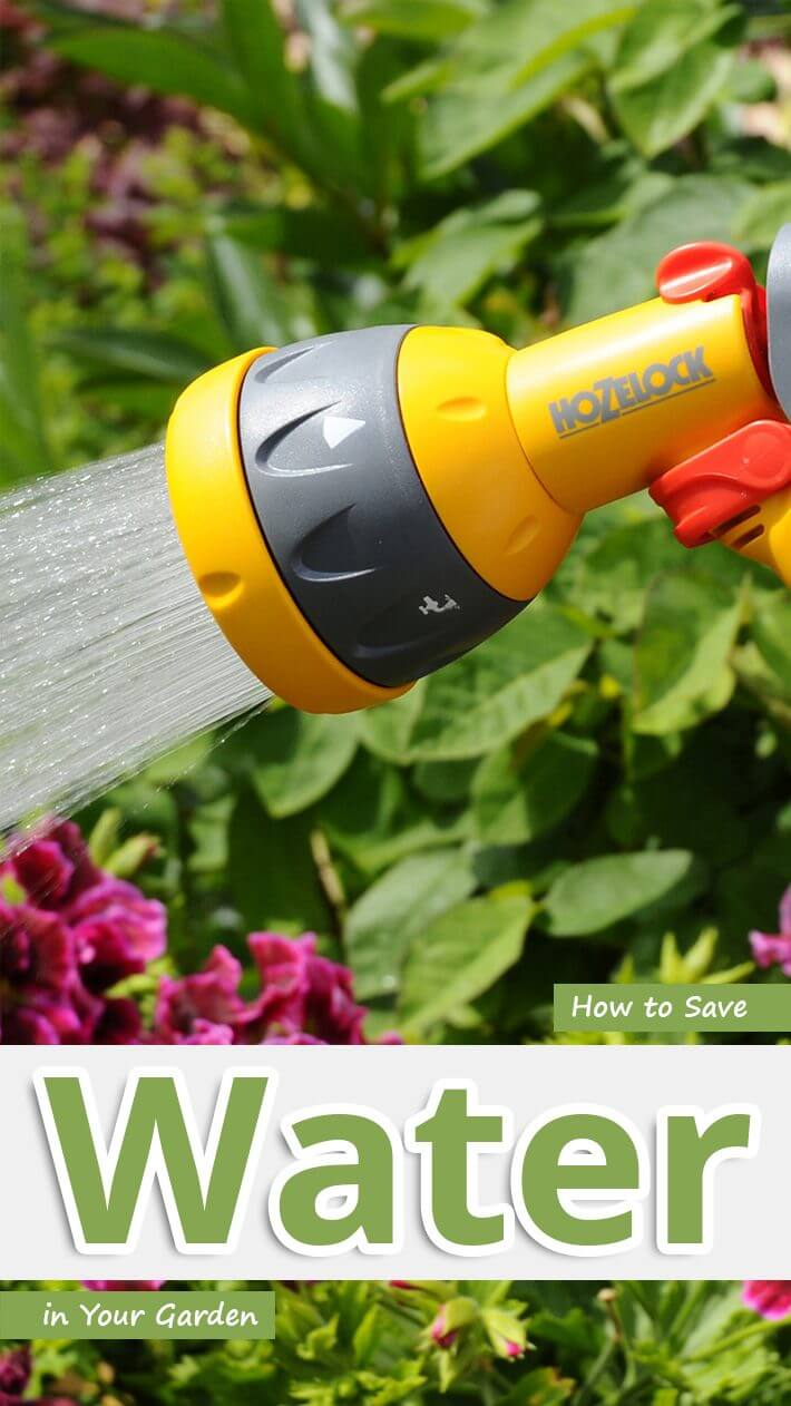 How to Save Water in Your Garden