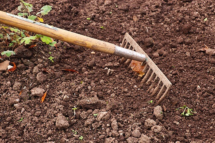 Get Rid Of The Weeds in 6 Easy Steps